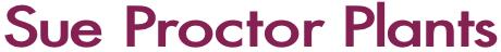 Sue Proctor Plants